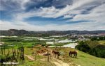 How to spend one day in Dalat