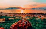 """Rực rỡ """"hoàng hôn trên bãi rêu xanh"""" tại Nha Trang"""