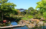 Yushien - Ngôi vườn thực vật tựa xứ sở thần tiên ở Nhật Bản