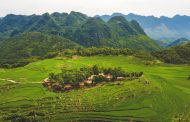 Wonderful Wooded Stays in Vietnam to Celebrate the International Day of Forests