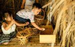 Fusion Trở Thành Tập Đoàn Khách Sạn Và Nghỉ Dưỡng Đầu Tiên Ở Việt Nam Cam Kết Sử Dụng Trứng Gà Nuôi Thả Và Đạt 100% Vào Năm 2025
