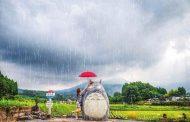Ghé thăm những địa điểm ngoài đời thật trong phim 'Hàng xóm của tôi là Totoro'