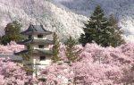 Những địa điểm mộng mơ bậc nhất ở vùng Kansai (Nhật Bản)